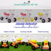 LABEILLE-Smart-Rabbit-KC-001-RB